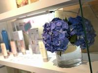 春到来!!! - 名古屋の美容室 ミュゼドゥラペ(Musee de Lapaix)公式ブログ