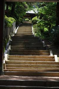 牛伏寺薄暑 - よく晴れた雨の日に。