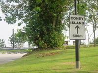 Cony Island 単独さんぽでサルに襲われる! - よく飲むオバチャン☆本日のメニュー