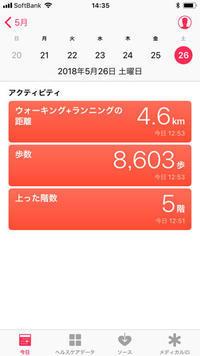 """一日の歩数    my walking data - B面""""糸始末な日々""""The back of """"Thread&Yarn Handing Days"""""""