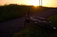 軌道に乗り始めつつある自転車通勤と写真活動 - 空のむこうに ~自転車徒然 ほんのりと~