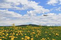 ようこそ!花咲く大地へ~旭川空港~ - 自由な空と雲と気まぐれと ~from 旭川空港~