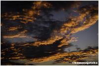 passion - 雲のごとく