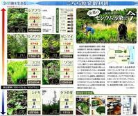 飯館村山菜のセシウム汚染は今/こちら原発取材班東京新聞 - 瀬戸の風