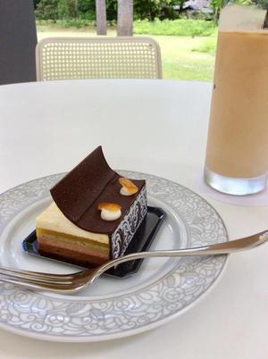TEIEN CAFEの本型ケーキ - BOOKカクテル