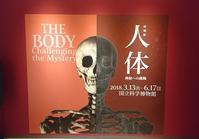 【お出かけしよう】国立科学博物館・人体展と季節のお寿司 - YUKA'sレシピ♪