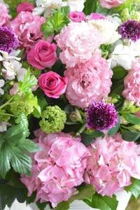 最近のお届け お祝い花 - Fiore Spazio 花便り