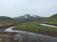 尾瀬ハイキング - ワタシ流 暮らし方   ☆アトリエきらら一級建築士事務所☆
