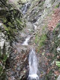 第20回やぶこぎネット・オフ会 at 鈴鹿の上高地 - 山にでかける日
