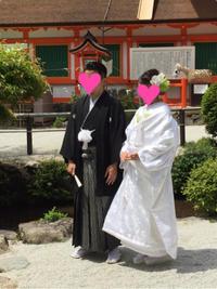 息子が結婚 - ★ Eau Claire ★ Dolce Vita ★
