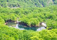 新緑の鳥海山 - 庄内日和