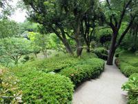 【クレマチスの丘】ヴァンジ彫刻庭園美術館の下の庭① - お散歩アルバム・・冬本番