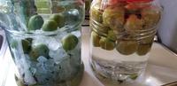 梅シロップと梅酒 - 木のこのこ