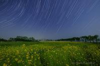 菜の花のある星空 - デジタルで見ていた風景