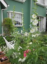 花盛りの庭 - 花の自由旋律