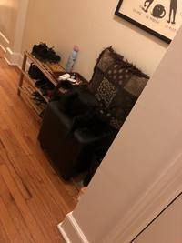 椅子と同化 - にゃんこと暮らす・アメリカ・アパート(その2)