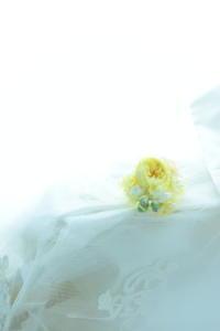 手首の花 リストレットの付け方のこつ と、プリザーブドレッスン6月2日、24日レッスンについて - 一会 ウエディングの花