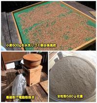 全粒粉100%のパン - ■■ Ainame60 たまたま日記 ■■