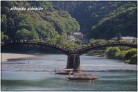 山口県岩国市錦帯橋 - 今が一番
