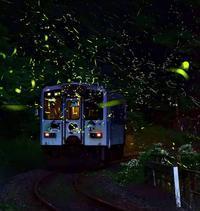 ホタル列車 - 上を向いて歩こう