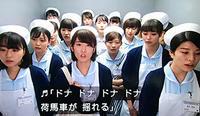 「いつまでも白い羽根」、君たちのゆく道は『ドナドナ』では無い…! - Isao Watanabeの'Spice of Life'.