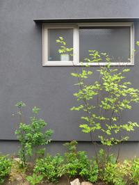 「久地の家」の外観撮影 - HAN環境・建築設計事務所