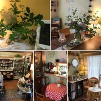 5月の🎶Maririn's Tea Salon - ♪Maririn's Tea Salonへようこそ