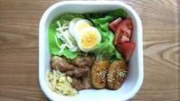 焼き鳥弁当と開聞岳の朝食 - オヤコベントウ