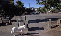 Vol.1342 鋼管通第2公園 - 小太郎の白っぽい世界