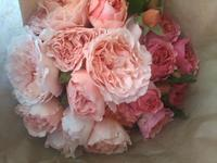 Jardin de rosesいっぱいの贅沢なレッスン - Très joliのstudio