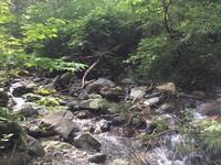 Fresh Water 渓流3 2018.05.28 犀川水系 - tkoma_fishing_style