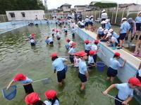 小学校の支援 - 加茂のトンボ (トンボ狂会)