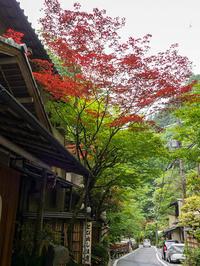 5月の京都その8(貴船神社&鞍馬寺) - 風任せ自由人