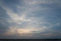 いつもの木と夕焼け。 - 東に向かえば海がある
