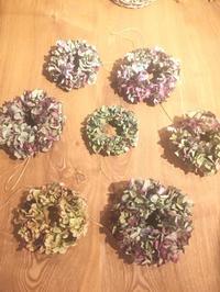 中野の「モノモノ」さんでの紫陽花リースワークショップ 終了しました。 - harihariの道草日記