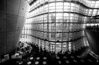 曲線美 - Today's one photograph
