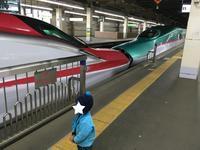 新幹線の連結を見るなら大宮駅がオススメ!久しぶりの元こまちE3系♪ - 子どもと暮らしと鉄道と
