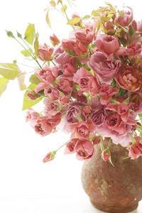 和ばらブーケ一番人気と今後のスター☆ - お花に囲まれて