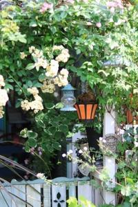 ゆーみんさんのお庭へ - ゆきなそう  猫とガーデニングの日記