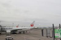 【国際芸術センター青森】青森旅行 - 1 - - うろ子とカメラ。