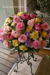 ふきのとうさんが涙する日。 - 花色~あなたの好きなお花屋さんになりたい~