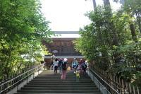 初夏の鎌倉「円覚寺」 - London tea