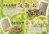 無農薬栽培の発芽玄米、雑穀米、米粉大好評発売中!「健康農園」さんの令和元年度の米作り!苗床の様子! - FLCパートナーズストア