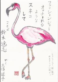 フラミンゴ「ファッションショー」 - ムッチャンの絵手紙日記
