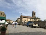 キャンティ地方、ブドウ5月下旬の生育日記2018 - フィレンツェのガイド なぎさの便り