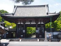 日本に来ています。- 石山寺 - アメリカ南部の風にふかれて