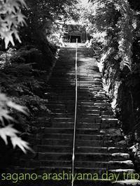 初夏の京都二尊院と渡月橋 #2 - serendipity blog