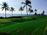 ハワイと日本のゴルフ - Mys  Honu