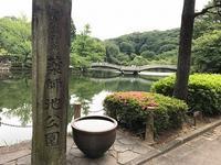 薬師池公園① - つれづれ日記