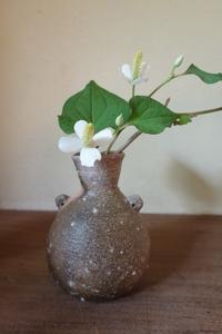 谷穹さんの花入れ - g's style day by day ー京都嵐山から、季節を楽しむ日々をお届けしますー